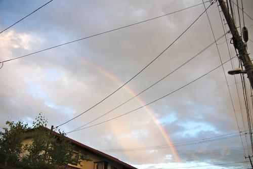 嵐の後の虹1.jpg