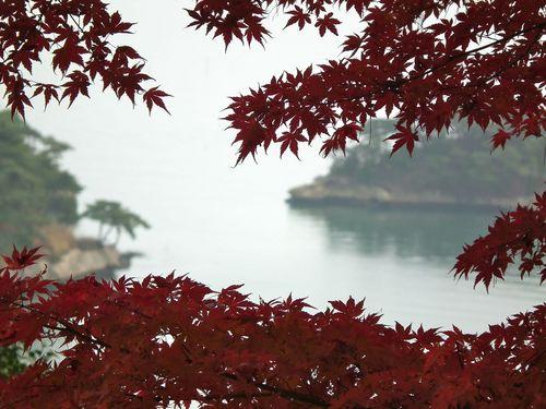 秋の松島.jpg