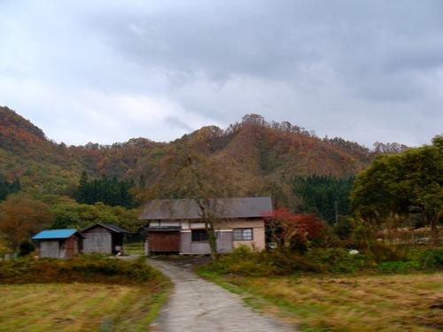 色付いた里の山.jpg