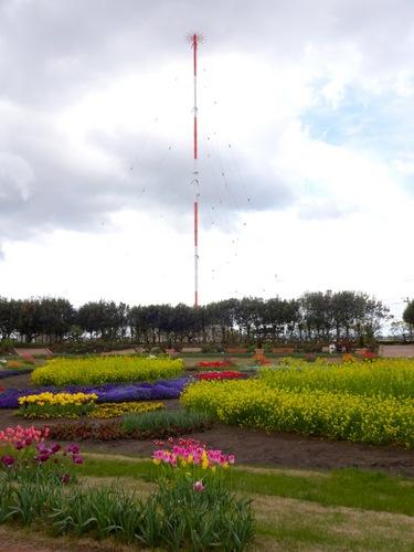 花壇と電波塔.jpg