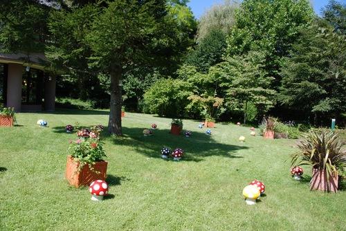 きのこの庭.jpg