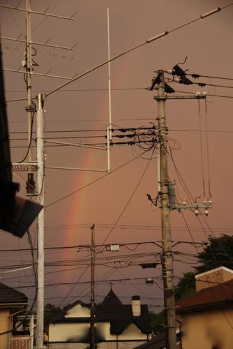 夕焼け色の虹.jpg